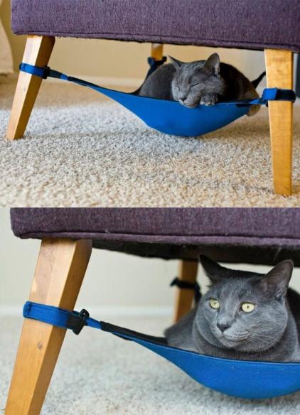15-rede-de-gatos-bem-legaus-1-vert