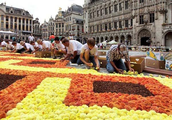 flowercarpetfestival4-3