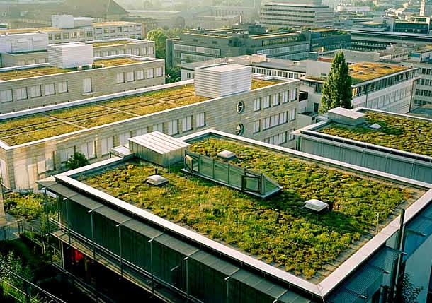 Arquitetura-Sustentável-Prédio-com-telhados-verdes